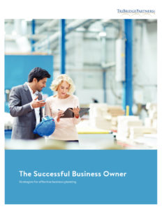 thumbnail of The Successful Business Owner